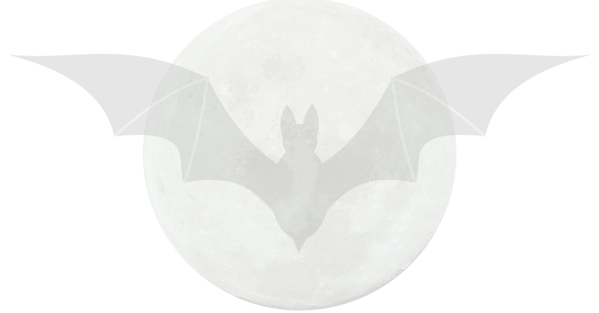 bat in front of the moon